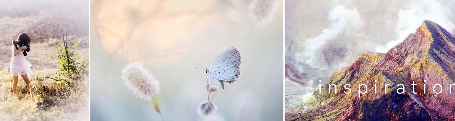 Nature artiste